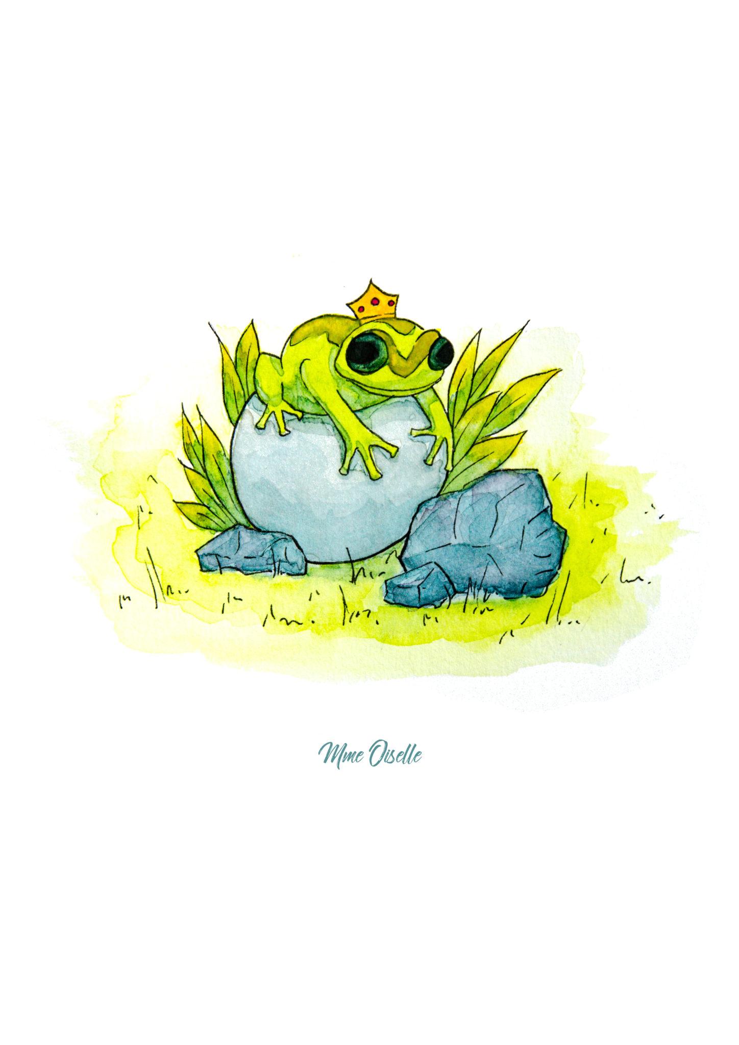 14_Frog_Final