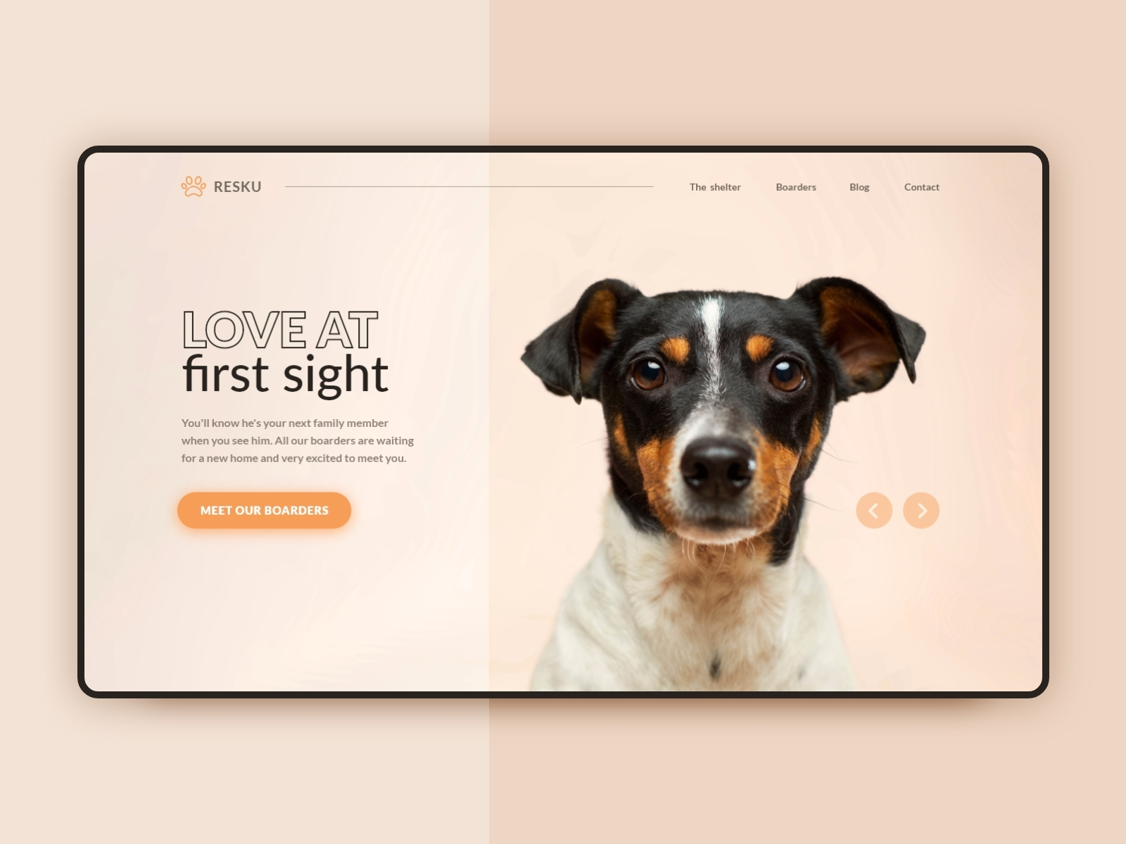 03 - Landing Page - Dribbble